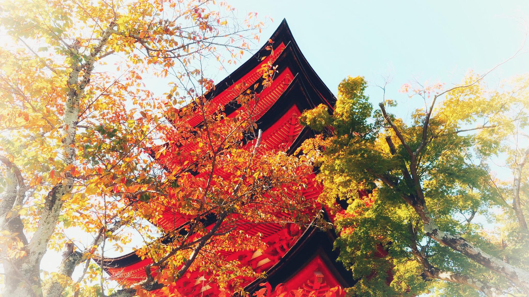Five Story Pagoda